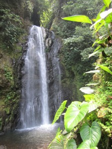 monteverde and costa rica horseback riding vacations