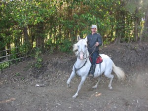 horseback riding vacation in monteverde