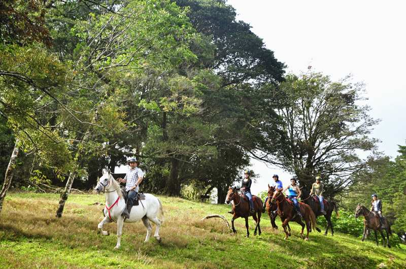 horseback ride in monteverde costa rica