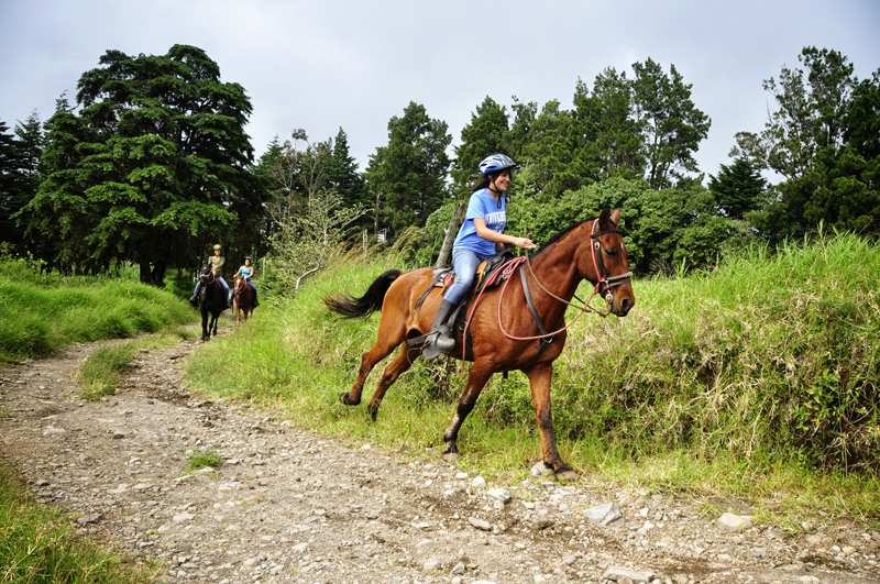 horseback riding vacation in costa rica